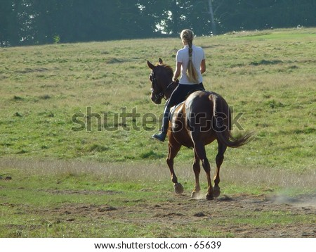 lady on a horse
