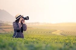 Lady photographer at tea field
