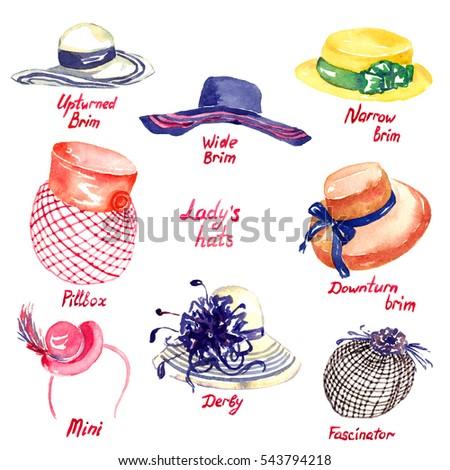 Lady's hats types: Upturned Brim, Wide Brim, Narrow Brim, Downturn Brim, Pillbox, Mini, Derby, Fascinator, hand painted watercolor illustration