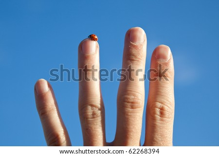 ladybird on a stretched finger in front of a  blue sky