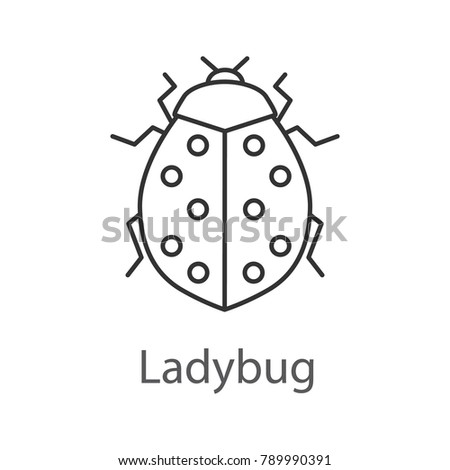 Ladybug linear icon. Ladybird. Insect. Thin line illustration. Contour symbol. Raster isolated outline drawing