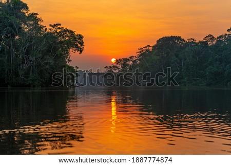 Lagoon sunset reflection in the Amazon river Rainforest. The Amazon river basin comprise the countries of Brazil, Bolivia, Colombia, Ecuador, Guyana, Suriname, Peru and Venezuela.