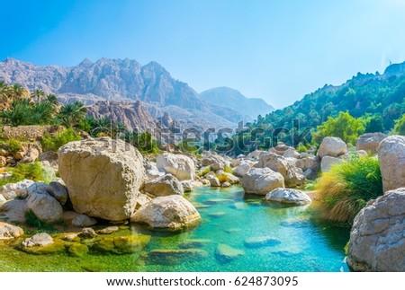 Lagoon with turqoise water in Wadi Tiwi in Oman. #624873095