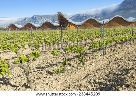 LAGUARDIA, SPAIN - MAY 9: The modern winery of Ysios on May 9, 2014 in Laguardia, Basque Country, Spain This modern winery, designed by Santiago Calatrava, was built in 2001.