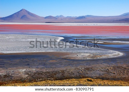 Laguna Colorada, Salar de Uyuni, Bolivia - stock photo