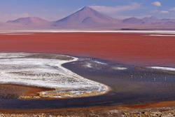 Laguna Colorado,Bolivia,South America