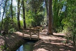 Laguna de Duero ditch between trees and small wooden bridge