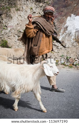LAHOUL VALLEY, INDIA - SEPTEMBER 5: Himalayan shepherd from Lahoul Valley leads his goat and sheep flock. India, Himachal Pradesh, Lahoul Valley September 5, 2012