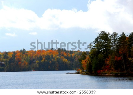 Lake and forest in the fall in northern Ontario, Canada