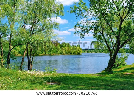 lake and green meadow near the water in sunny day