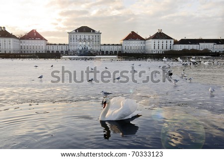 lake and swans in europe