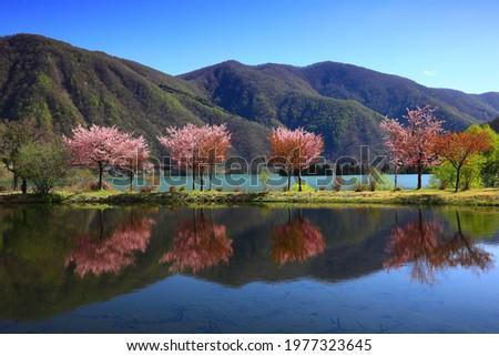 Lake at dawn in Nishiwaga Town, Iwate Prefecture Stock photo ©