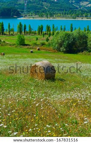 Lake Bilancino on the Background of Italian Alps