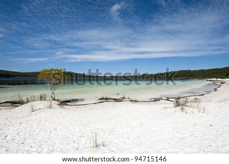 Lake Birrabeen at Fraser island in Australia