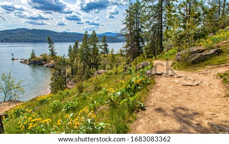 Lake Coeur d'Alene on Spring day Photo stock ©