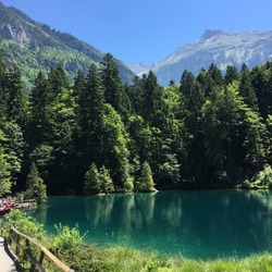 Lake Flims and forest Switzerland