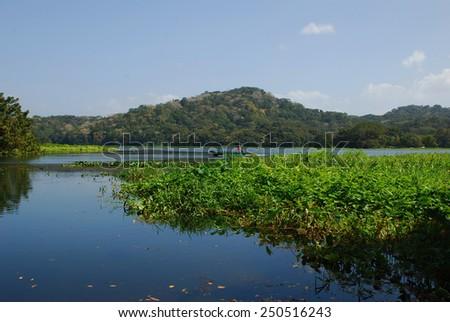 Shutterstock lake Gatun