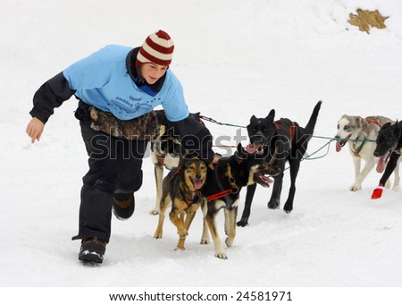 LAKE GEORGE, NY - February 7, 2009: A dog sled handler grabs her sled dogs in order to stop and pick up new passengers for rides on the ice during the February 7 , 2009 Lake George Winter Carnival.