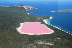 Lake Hillier, Western Australia: Amazing pink lake, natural landmark of Australia, in Middle Island, Recherche Archipelago Nature Reserve, near Esperance.
