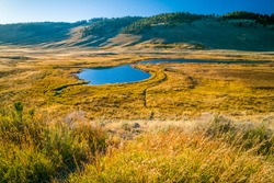 Lake in a prairie field in Yellowstone National Park, Wyoming, USA.