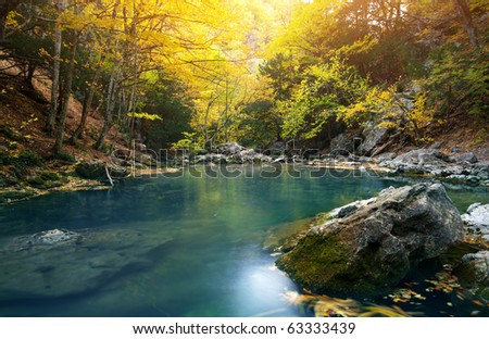 Lake in autumn forest. Nature composition.
