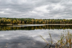 Lake in autumn forest under gray clouds. Pond and autumn colored trees in the park.