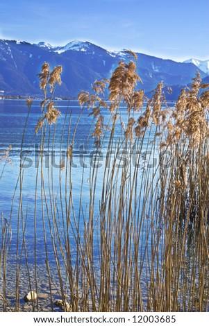Lake in Bavaria - Tegernsee - stock photo