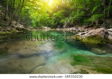 Lake in forest. Nature composition. #589350230
