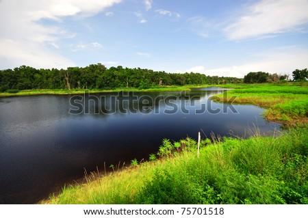 Lake in Paynes Prairie State Preserve, FL