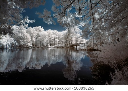 lake in Poland.The infrared image.