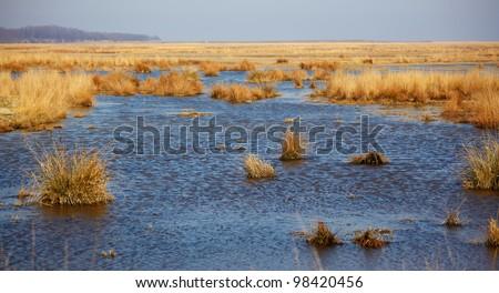 Lake in spring nearby Vadu village in Danube Delta Biosphere Reserve, Romania.