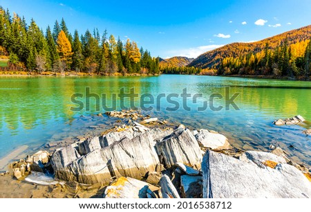 Lake in the mountain forest in autumn. Mountain lake water. Mountain lake in autumn landscape. Lake in mountains