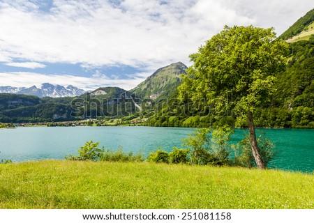Lake Lungern, Switzerland #251081158