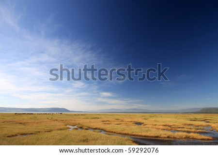 Lake Nukuru National Park in Kenya, Africa - stock photo