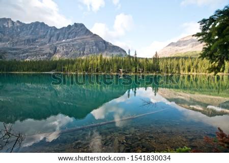 Lake Oesa trail at Lake O'hara, Yoho national park, BC, CA Zdjęcia stock ©
