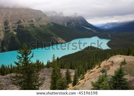 Lake Peyto in Canada.
