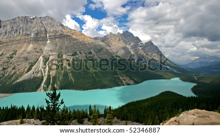 Lake peyto panorama view in banff national park.