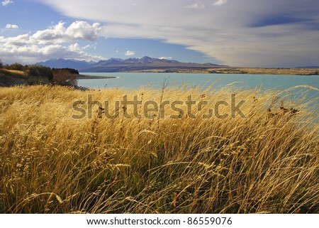 Lake Pukaki on the South island of New Zealand - stock photo