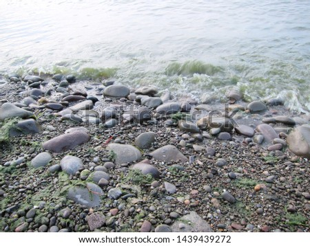Lake shoreline with gray rounded rocks and gravel, seaweed and lapping waves.