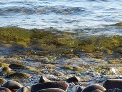 Lake Superior Rocky Shoreline View