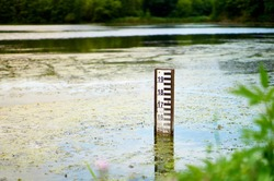 Lake water level sign in Falenty, Poland. Water level depth meter in the pond