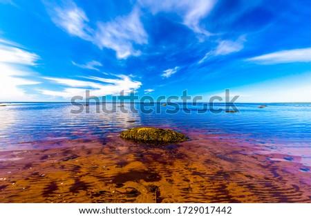 Lake water sky horizon landscape. Summer lake water view
