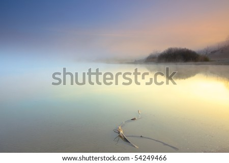 Lake with wood in the mist at sunrise