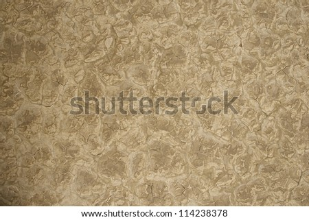 Lakebed Dry Nature Photo Background. Dry Cracked Lakebed. Deserts Photo Collection.