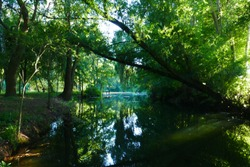 Lakes of Wülfingen in summer, near Elze, district Hanover, Lower Saxony, Germany