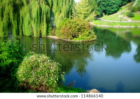 Lakescape in Poland - willow tree