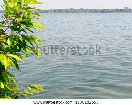 Lakeside blue water with island and green tree leaves. blue sky,water surface texture  with brightness, shore and sunny day.water background. .
