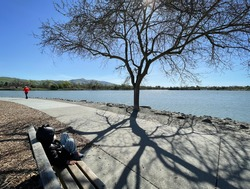 Lakeside in Winter with the view of a free, shadow, wooden bench, and people. Livable nature environment for kids and family. Lake Elizabeth, Fremont, California, USA.