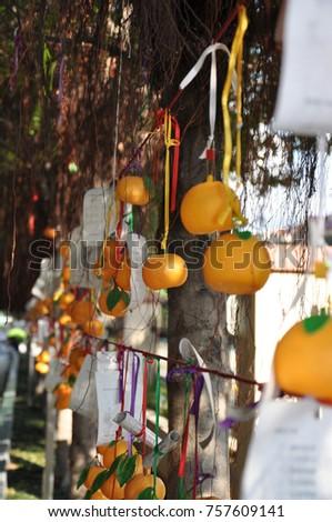 Lam Tsuen Wishing Orange #757609141