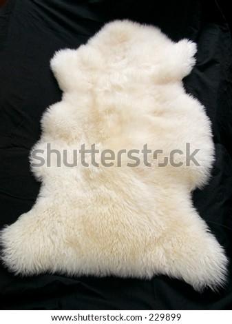 Lamb skin